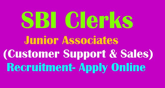 SBI Clerks 8653 Vacancies Recruitment Notification 2019 Junior Associates  (Customer Support & Sales) Eligilibilty details, Apply Online @ sbi.co.in -  TeachersBuzz