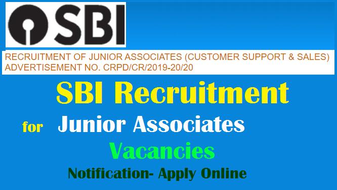 SBI Recruitment 2020 for 8653 Junior Associate Vacancies Notification Apply  Online @ www.sbi.co.in. - TeachersBuzz